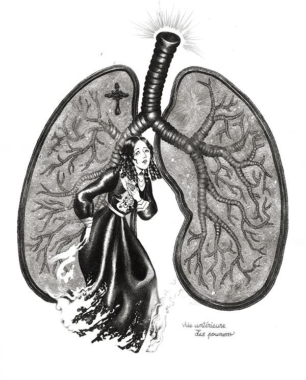 Vue antérieure des poumons
