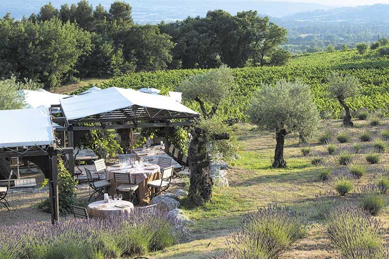 Bistrot et jardin dans les vignes