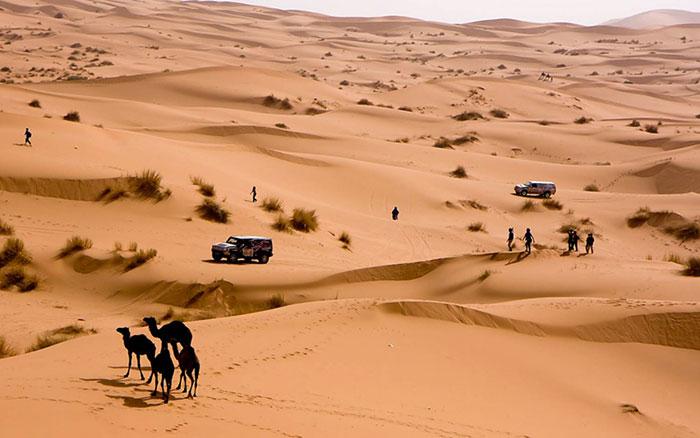rallye-aicha-des-gazelles-desert